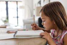 Focused Girl Drawing In Sketchbook At Table