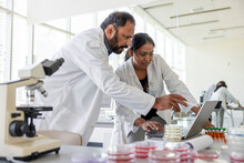 Scientists In Lab Coats Using Laptop In Laboratory