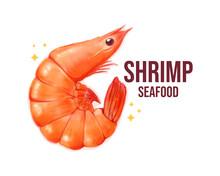 Shrimp Seafood Banner Logo Watercolor Hand Drawn Cartoon Art Illustration