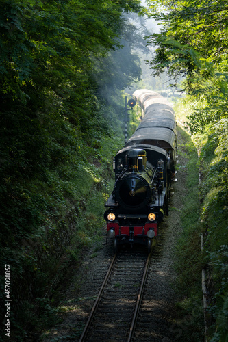 Fototapeta Vintage steam train with ancient locomotive and old carriages runs on the tracks