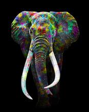 Elephant Art Full Colors , Animal Wildlife