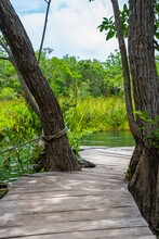 Tulum, Mexico. May 25, 2021. Beautiful Cenote Amidst Trees With Footbridge At Tulum A Famous Tourist Attraction Or Recreation Area.