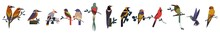 Big Set Birds. Birds Flying, Animals, Bird Silhouette, Bird Vector.Abstract Art Bird, Logo Birds Icon Set Vector Illustration, Set Birds Vector. Collection Of Cartoon Birds