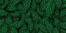 Merry Christmas And Happy New Year Winter Background With Realistic Pine Tree Branches. Vector Illustration. Xmas Fir Backdrop Graphic Element For Festive Poster Design, Holiday Voucher Wallpaper.