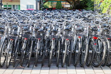 Group Of Bicycles Parked In A Bike Rental