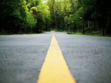The Yellow Line In The Middle Of The Road Leading Into The Forest