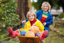 Kids On Pumpkin Patch. Child Autumn Outdoor Fun.