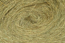 A Fresh Bale Of Hay As A Background