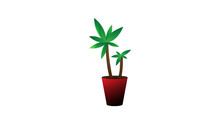 Yucca Plante Vecteur Pot Rouge