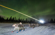 Equipo De Perros Entrenando De Noche Bajo La Aurora  Boreal
