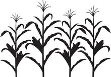 Corn Stalk Black And White Vector Design