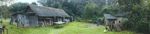 Panorama Of An Old Rural Wooden Gray House And Outbuilding. Household, Chickens, A Dog On A Chain Next To The Booth. Green Lawn. Forest In The Background