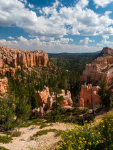 Beautiful Bryce Canyon National Park Sunrise Scene With Golden Light Shining On Hoodoos And Trees