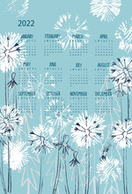 Calendar Vector Template For Year 2022 With Hand Drawn Fluffy Dandelion Flowers On Light Blue Background. Modern Floral Design