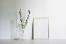 A Frame With Leaves On A White Wall With Nature Light.