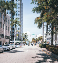View Of The City Street People Miami Beach Tree Buildings Cars Traffic Hotel Tourism