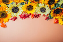 Fall Autumn Background. Bunch Of Yellow Orange Lime Sunflowers With Red Berries And Seedpods. Space