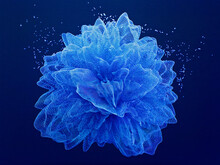 3d Render Of Blue Flower In Moving Particles. Blue 3d Background. 3d Illustration