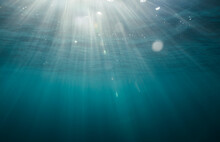 Underwater View Of Light Rays Coming Through Water Surface