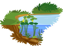 Split Level Cartoon Landscape With Blue Pond Overgrown With Flowering Yellow Water-lily (Nuphar Lutea) With Green Leaves