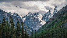 Dramatic Rainy Alpine Landscape With Green Forest And Snow Sharp Pinnacle In Low Clouds. Pointed Rocks In Overcast Weather. Atmospheric Awesome View To Pointy Mountain In Low Clouds.