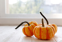 Close Up Shot Of Three Orange Pumpkins On White Wooden Windowsill As A Symbol Of Autumnal Holidays. Background, Copy Space For Text.