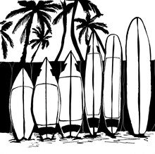 Surf Boards On The Fence
