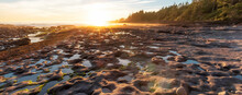 Botanical Beach On The West Coast Of Pacific Ocean. Summer Sunny Sunset. Canadian Nature Landscape Background. Located In Port Renfrew Near Victoria, Vancouver Island, British Columbia, Canada.