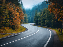Road In Autumn Foggy Forest In Rainy Day. Beautiful Mountain Roadway, Trees With Orange Foliage In Fog And Overcast Sky. Landscape With Empty Asphalt Road Through The Woods In Fall. Travel. Road Trip