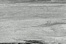 Closeup View Of The Texture Of The Wooden Log