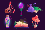 Witch items magic mirror, spell book, bird foot and sack with dry herbs, fly agaric mushroom, bottle with snake. Assets elements for game, isolated wizard stuff, Cartoon vector illustration, icons set