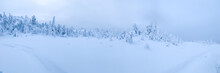 Wide Panorama Of Frozen Snow-covered Tundra In Arctic With Traces Of Snowmobile
