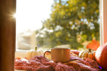Autumn Still Life, Cup Of Hot Tea, Pumpkins,falling Leaves And Scarf On The Windowsill