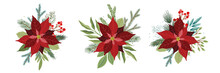 Christmas Set With Poinsettia Flowers And Christmas Floral Elements