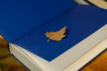 Dry Yellow Leaf Lies On The Blue Endpaper Book. Thick Hardcover Textbook With Colored Endsheets. Selective Focus.