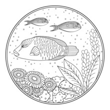 Underwater Landscape Of A Sea Reef. Round Coloring Book Page Consisting Of Fish, Algae And Corals. Anti-stress Doodle Pattern Of High Detail Black And White.