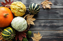 Autumn Composition With Assorted Pumpkins
