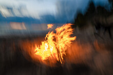 Closeup Of Burning Fire And Flames