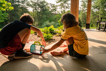Children Catching Insects With A Cage Outdoors During Summer