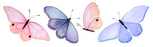 Watercolor Blue And Pink Butterflies. Isolated On White Background.Butterfly Spring Illustration.