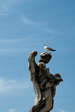 Vertical Shot Of A Seagull Perched On A Statue In Vatican City, Italy