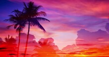 Luxury Morning View On Tropical Landscape With Palms And Moving Transparent Colorful Clouds. Inspiring Summer Sunrise Time Lapse. Splendid Daybreak Scene Of Marvellous Nature. Rich Blazing Colors.