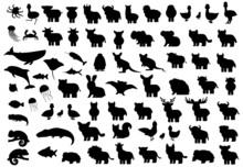 Animals Silhouette Big Set. Vector Elephant Bat Monkey Lion Tiger Giraffe Hippo Rhinoceros Bear Whale Penguin Ostrich Boar Crocodile Chicken Dog Crab Dolphin Fish Jellyfish Hare Duck Octopus Cat