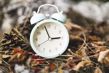 Daylight Savings Time Alarm Clock Fall Back