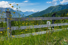 Wooden Fence On The Mountains Surrounded By Plants