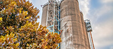 Industrial Silos Surrounded By Trees. Sustainability Concept