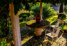 Picnic Area In A Garden With Table And Chairs