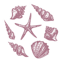 Set Of Seashells And Starfish. Vector Stamps With A Grainy Texture.