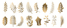Christmas Vector Branches, Tree, Fir And Pine Cones, Evergreen Set, Christmas Decorations, Gold winter Plants, Leaves And Twigs, Isolated