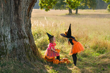 Two Sisters In Carnival Dresses Of Witches Near A Huge Tree Trunk Play With Pumpkins At Sunset On Halloween.  Trick Or Treating. Communication Between Two Friends.